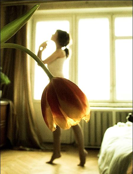 BalletDancer&Tulip